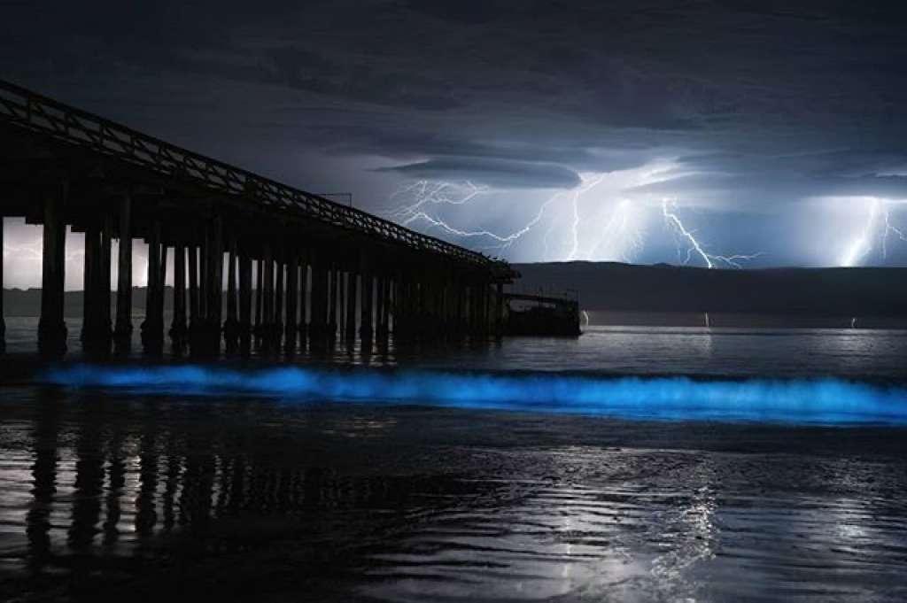 Lightning Surf- Santa Cruz, California