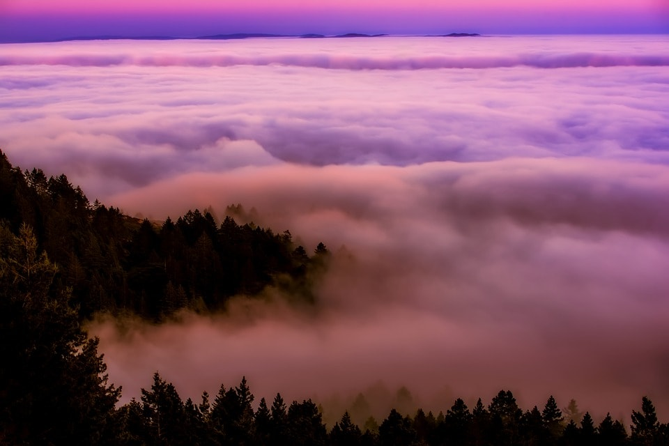 California Fog- One To Zero: Fear, Risk & Creativity- Nancy Hillis MD and Bruce Sawhill PhD